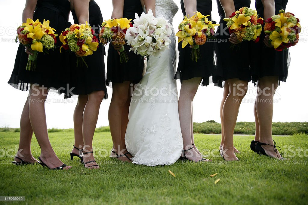 Bridal Party - Ladies royalty-free stock photo