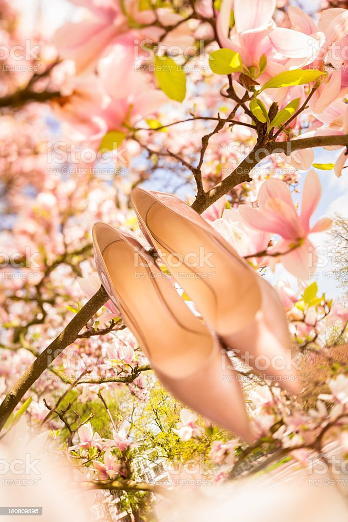 Bridal shoes in a flowerful tree royalty-free stock photo