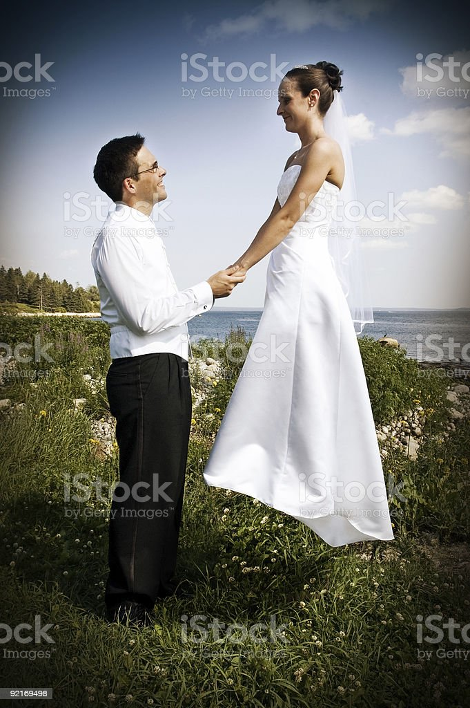 Bride & Groom royalty-free stock photo