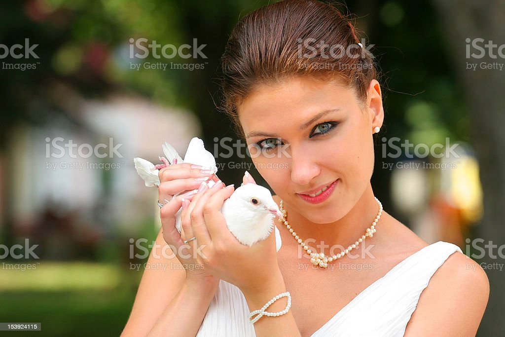 bride & white dove royalty-free stock photo
