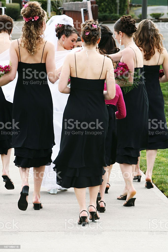 Bride and Bridesmaids Flocking. royalty-free stock photo