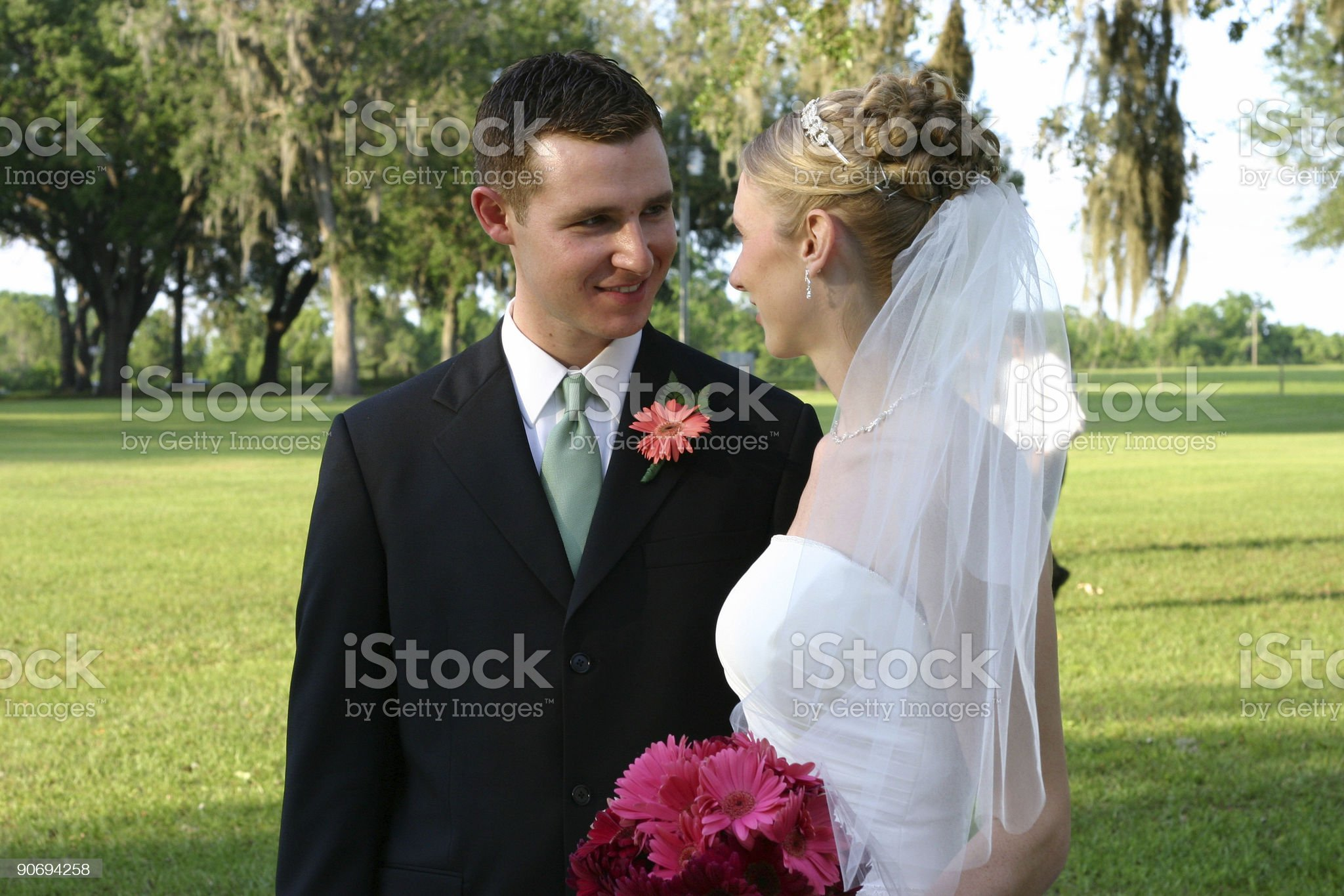Bride and Groom 7 royalty-free stock photo