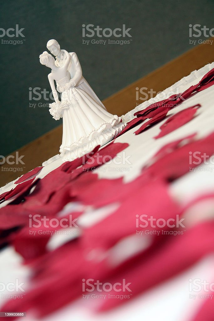 Bride and Groom Dance royalty-free stock photo