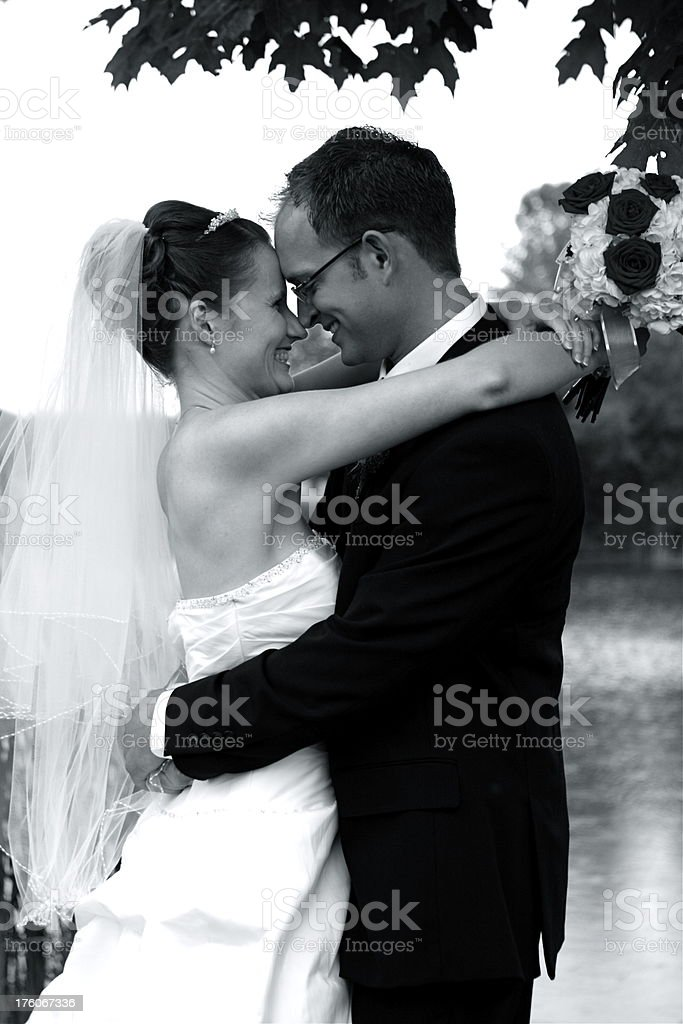 Bride and Groom Embracing royalty-free stock photo