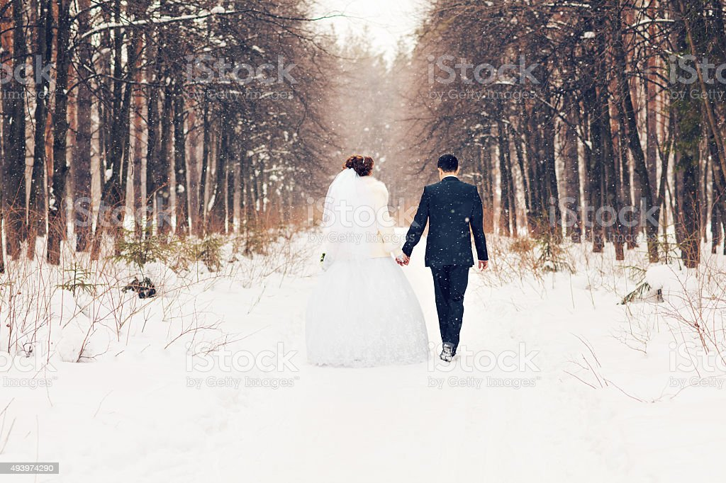 bride and groom in the winter woods stock photo