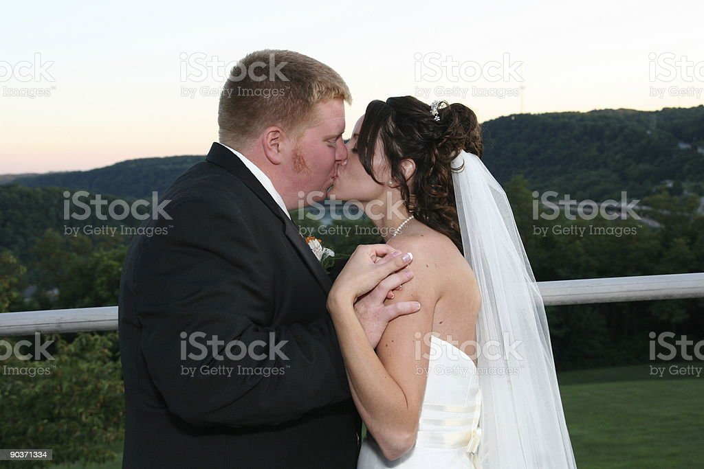 Bride and Groom Kissing 2 royalty-free stock photo