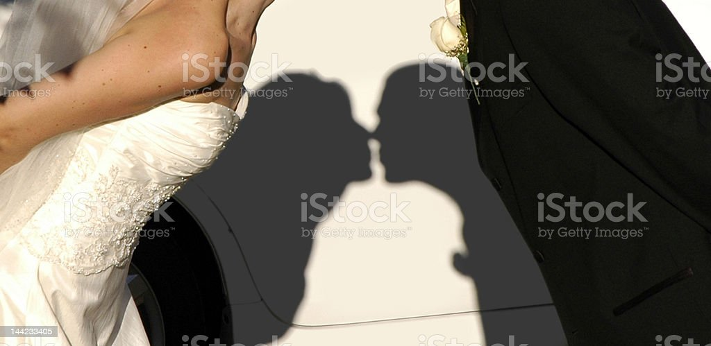 Bride and groom kissing in shadow royalty-free stock photo