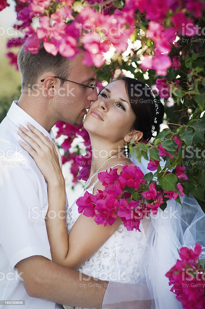 Bride and groom kissing in the flowers royalty-free stock photo