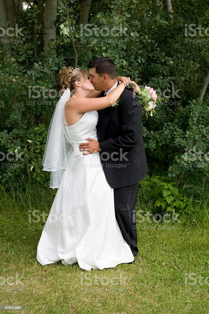 Bride and Groom / Kissing royalty-free stock photo