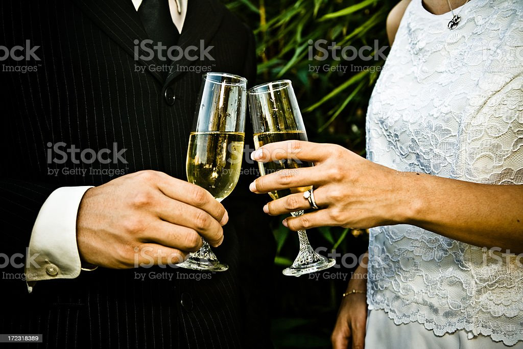 Bride and Groom make a toast royalty-free stock photo