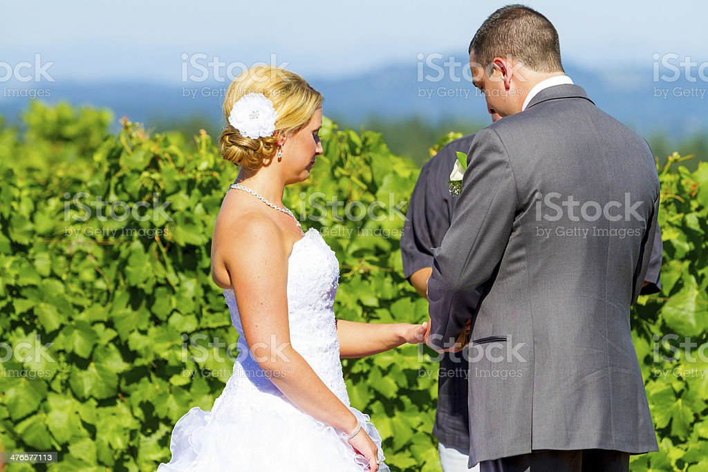 Bride and Groom Ring Exchange royalty-free stock photo