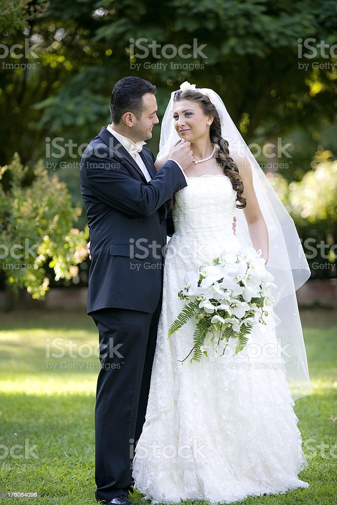 Bride And Groom Series royalty-free stock photo