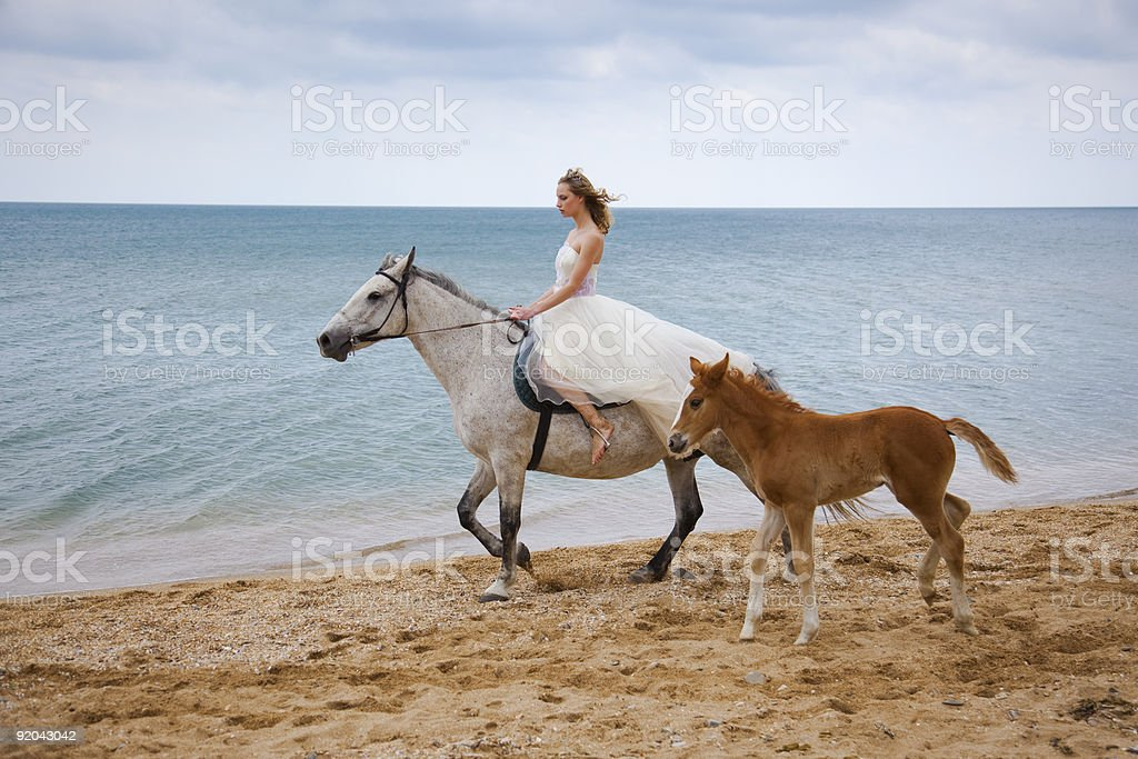 Bride and horses on the beach royalty-free stock photo