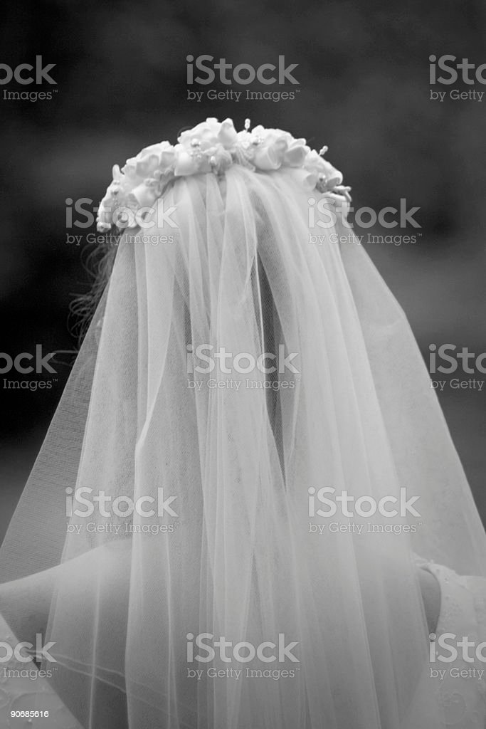 bride and veil royalty-free stock photo