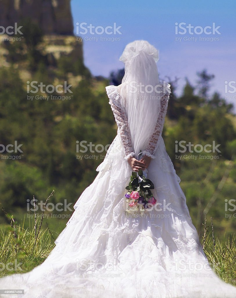 Bride From The Back In a Natural Setting stock photo