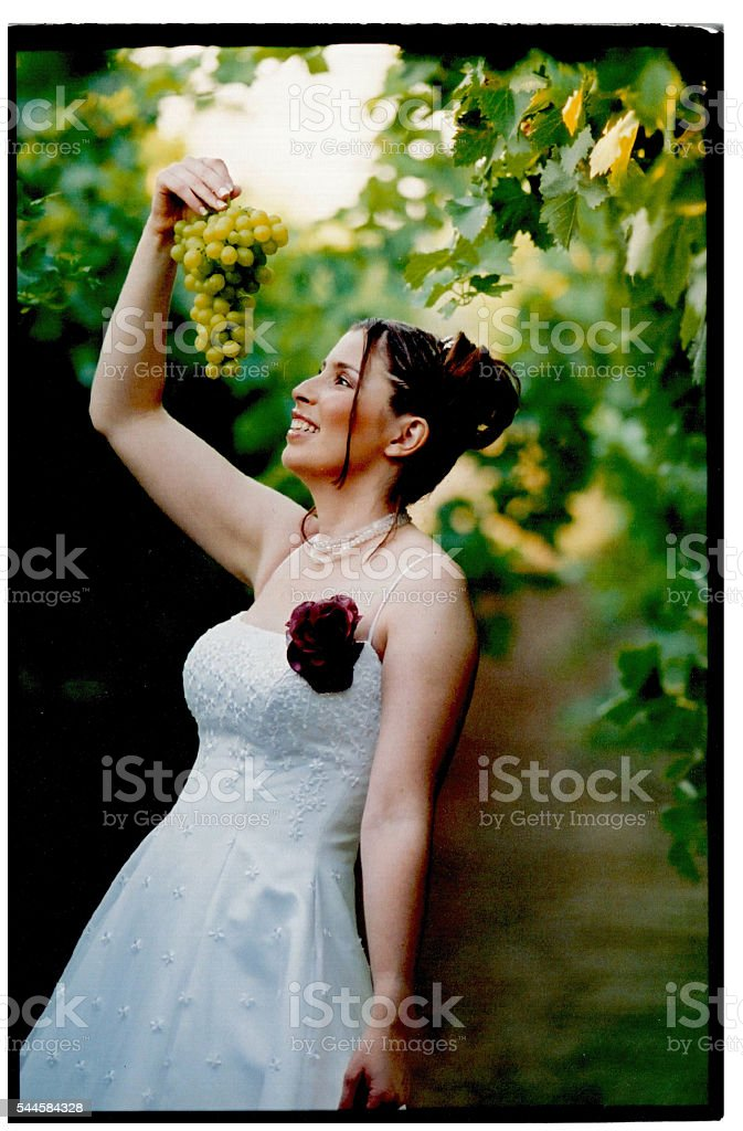 Bride holding a bunch of grapes stock photo