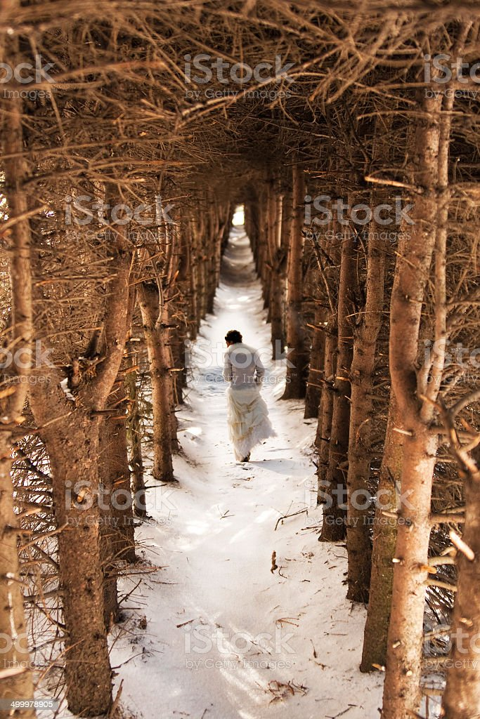 Bride in a winter forest stock photo