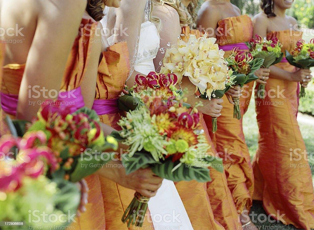 Bride in Focus royalty-free stock photo
