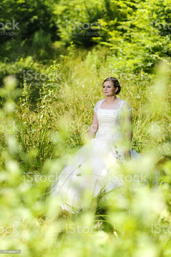 bride in forest royalty-free stock photo