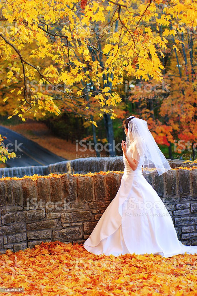 bride in the fall stock photo
