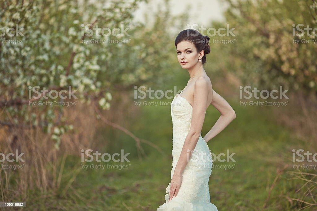 Braut Lizenzfreies stock-foto