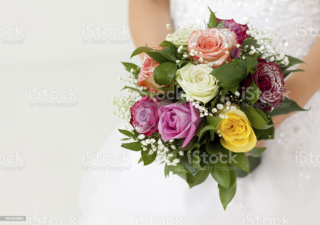 Bride royalty-free stock photo