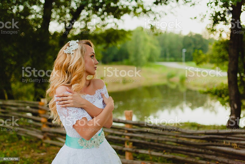 Bride portrait on the background of the countryside stock photo