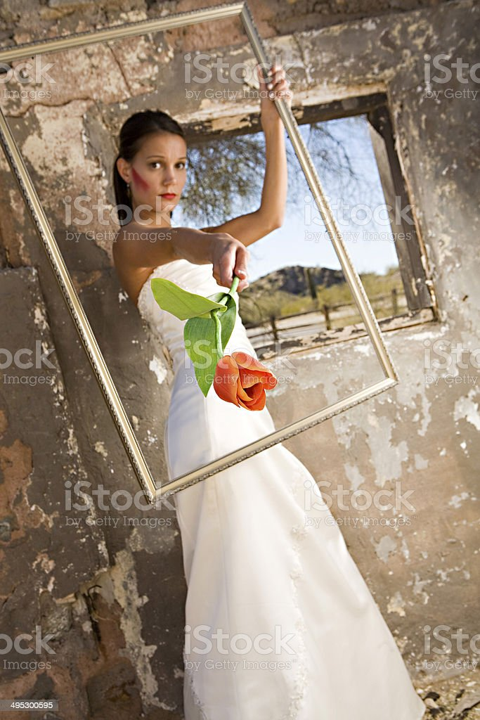 Bride with Rose stock photo