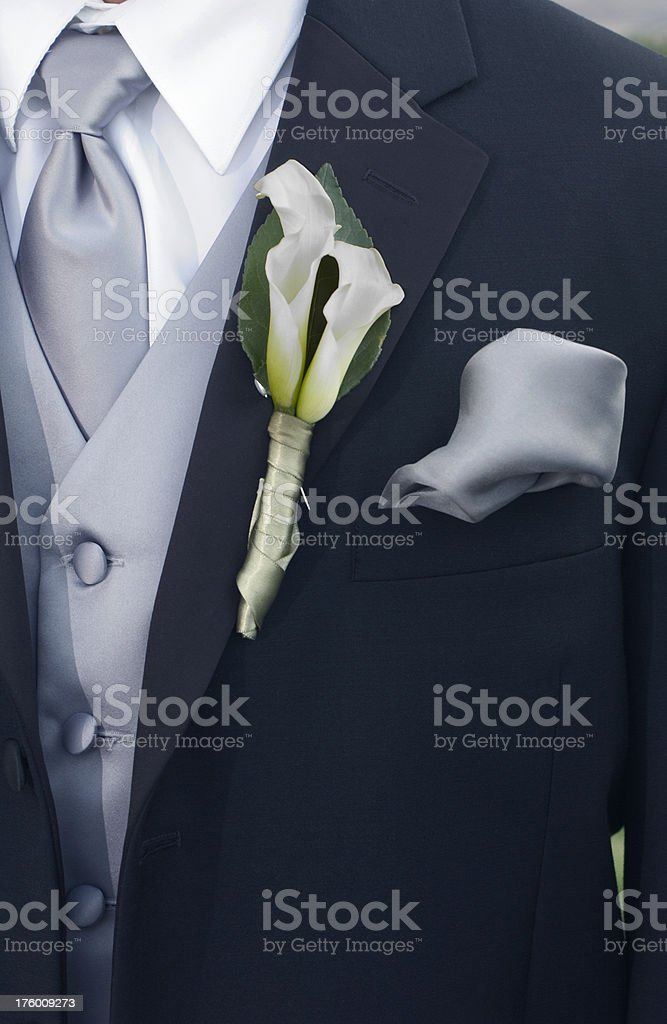 Bridegroom_front_tight royalty-free stock photo