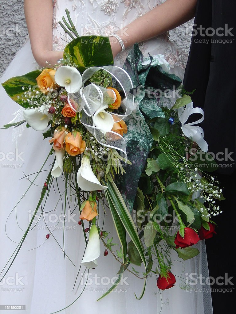 Bride's bevy royalty-free stock photo