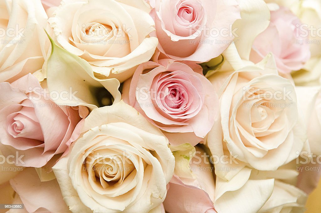 Bride's Bouquet royalty-free stock photo