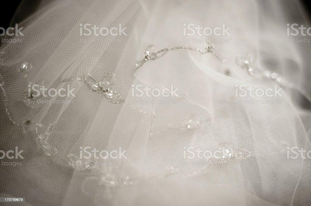 Bride's Veil Detail royalty-free stock photo