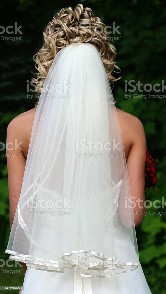 bride's veil stock photo