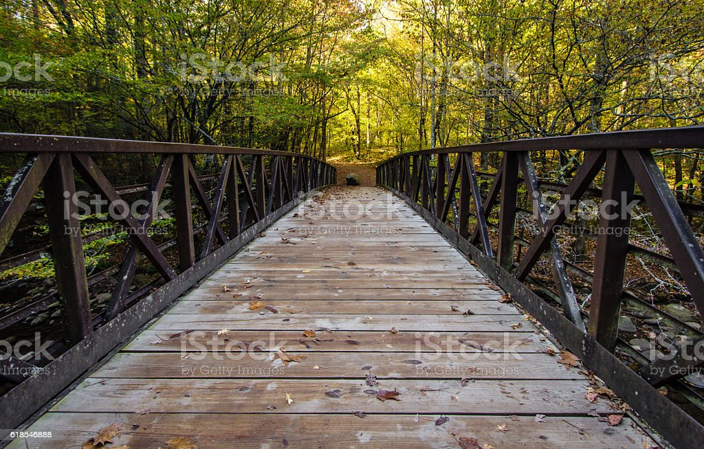 Bridge Across A Great Smoky Mountain Stream stock photo