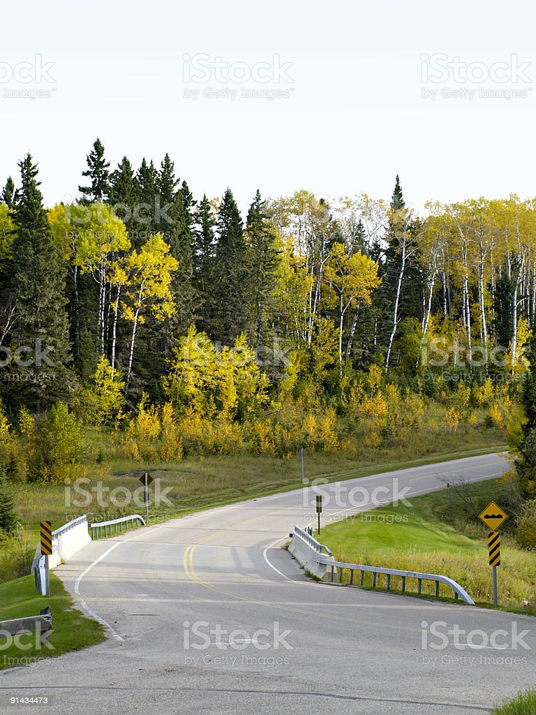 Bridge and curved road in forest stock photo