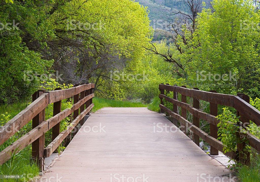 Bridge and Recreation Bikepath royalty-free stock photo