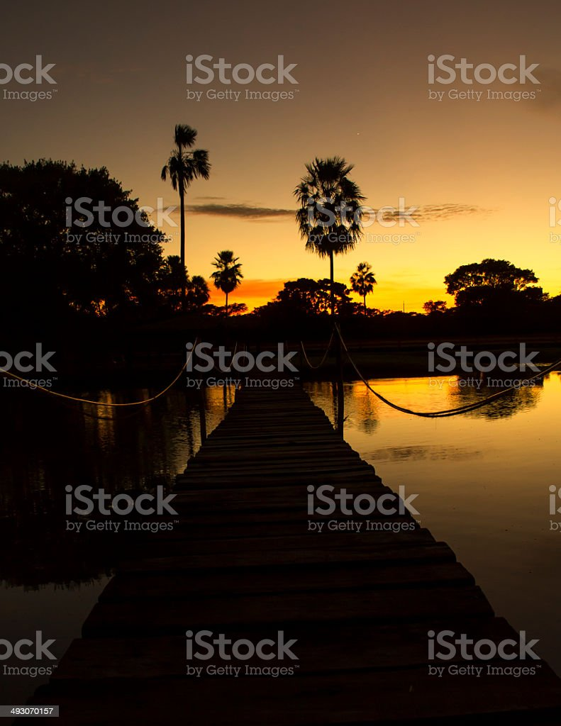 Bridge and Tropical Sunrise stock photo