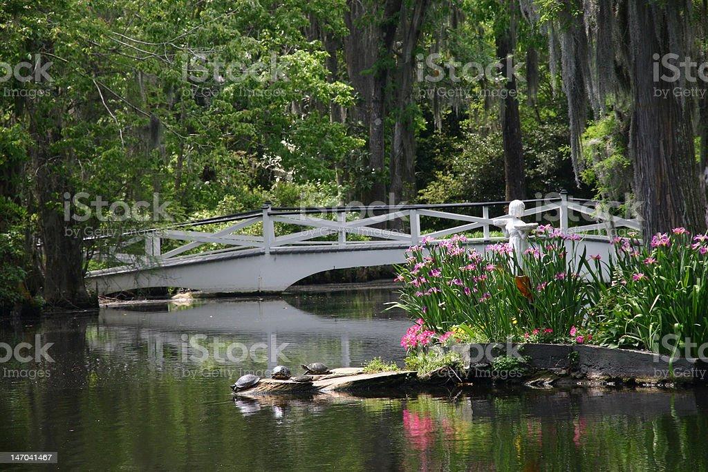Bridge at Magnolia Plantation royalty-free stock photo