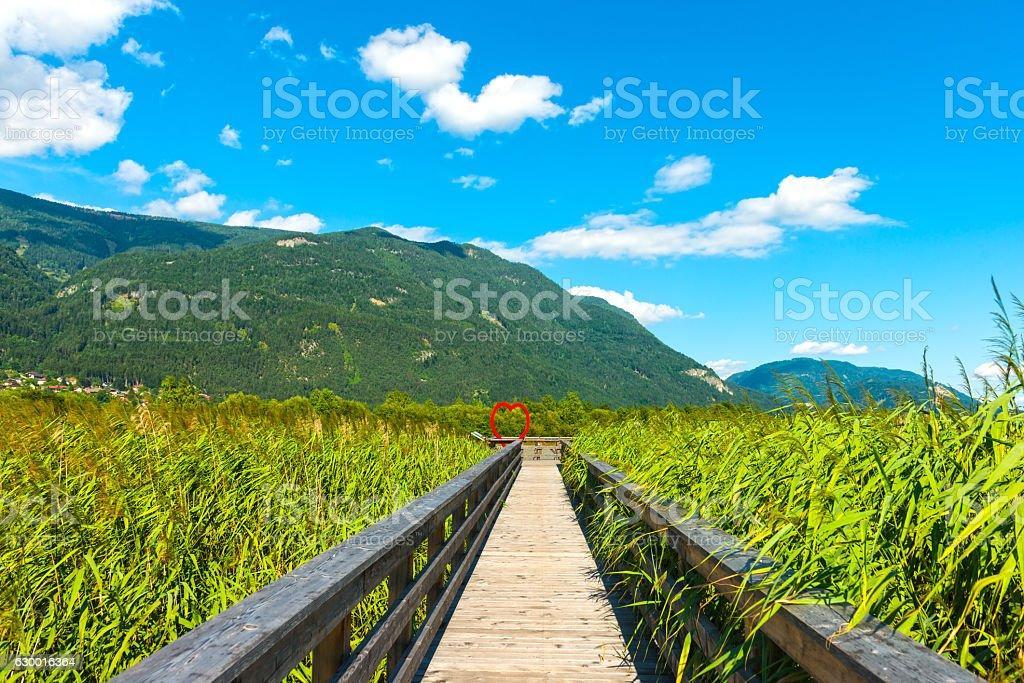 Bridge at River Drava, Austria stock photo