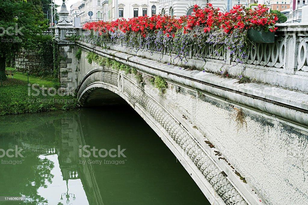Bridge. Color Image royalty-free stock photo