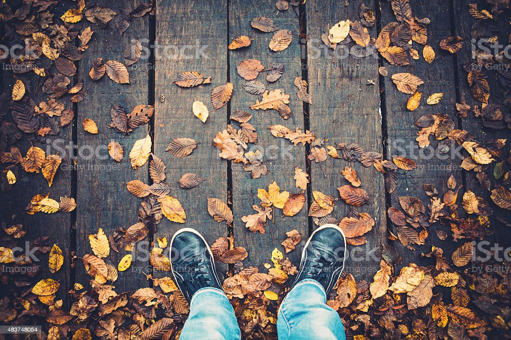 Bridge Covered With Autumn Leaves stock photo