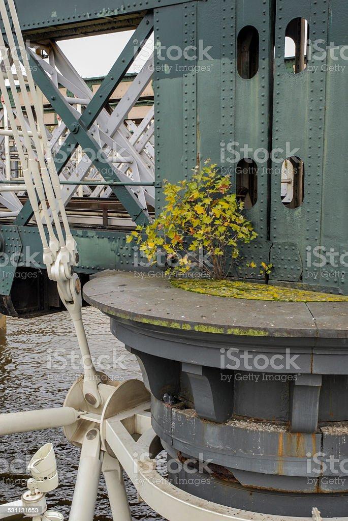 Bridge detail with shrub in London, UK stock photo