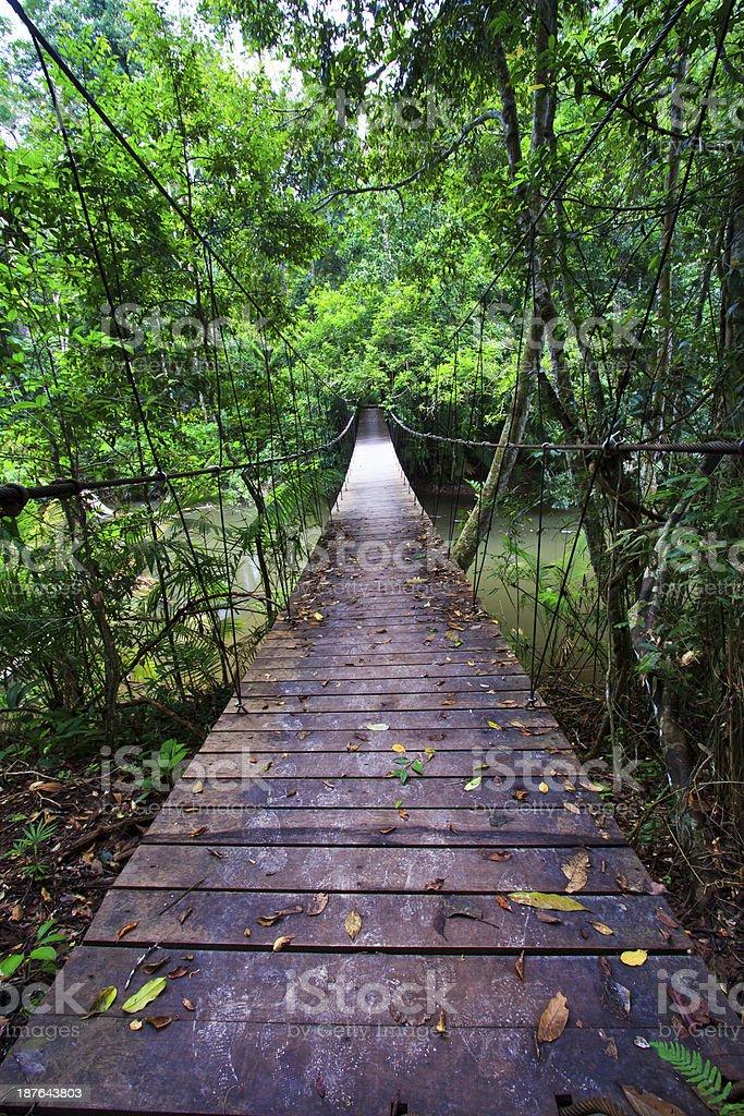 Bridge hangers stock photo