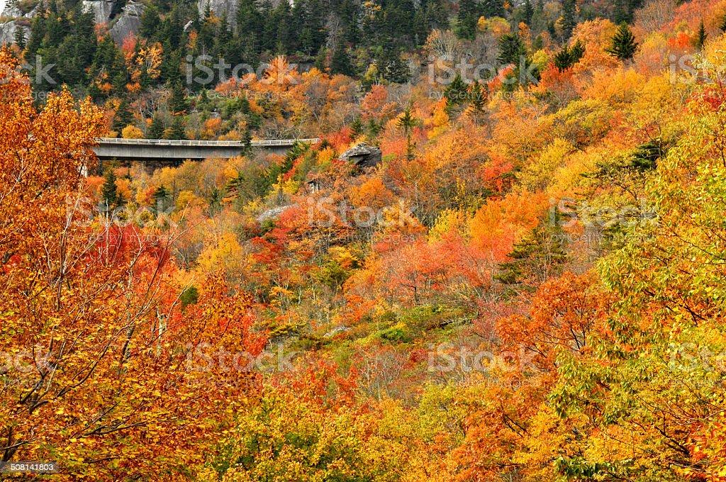 Bridge in fall colors on the BlueRidge Parkway. stock photo