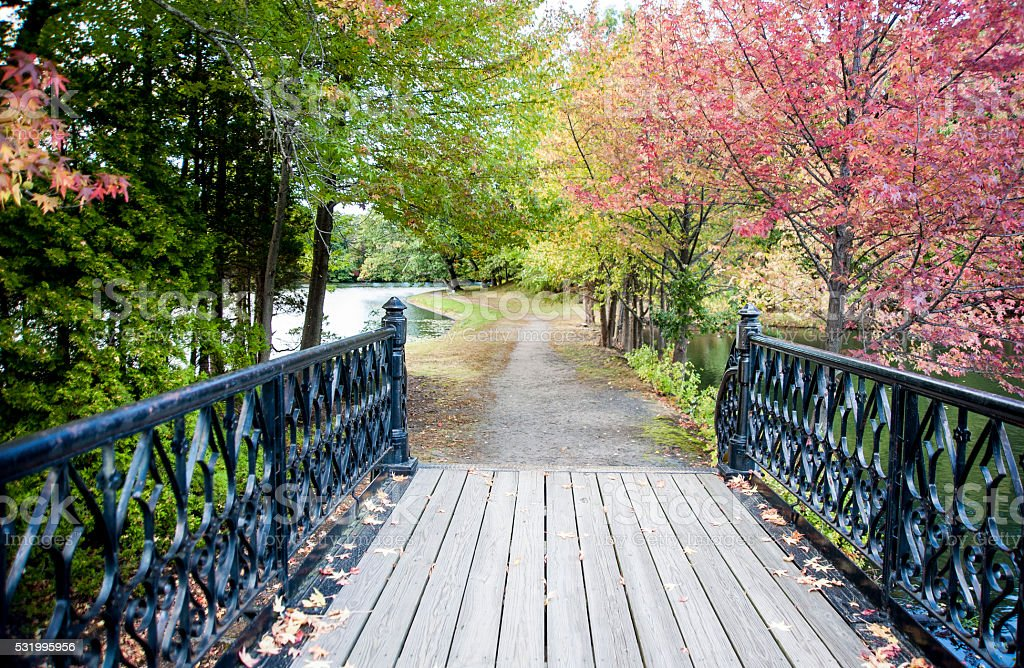 Bridge in park stock photo