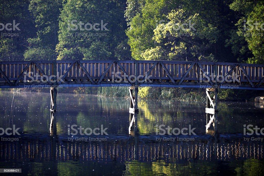 Bridge in the Dandenongs, Victoria, Australia royalty-free stock photo