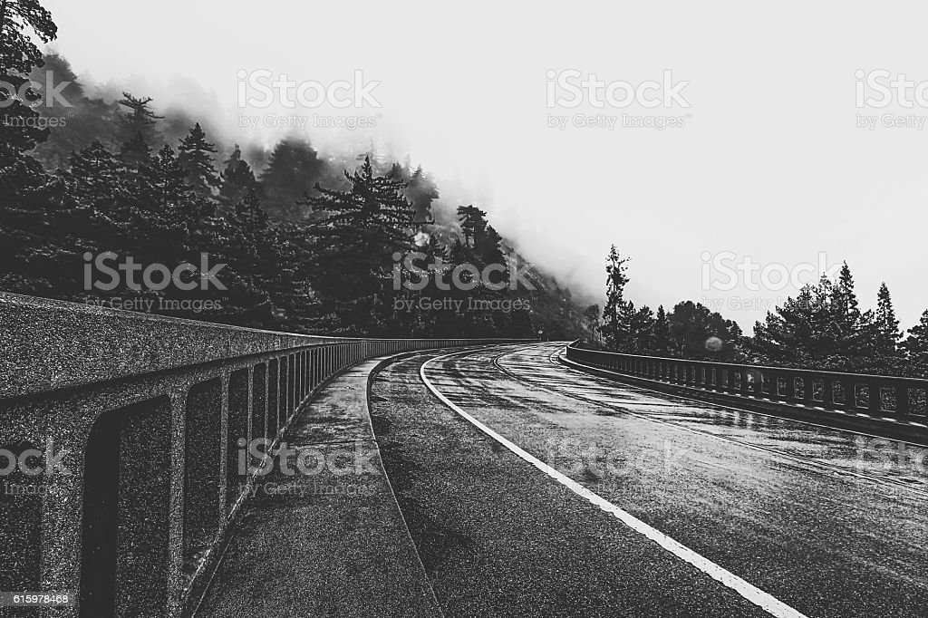 bridge in the forest in black and white stock photo