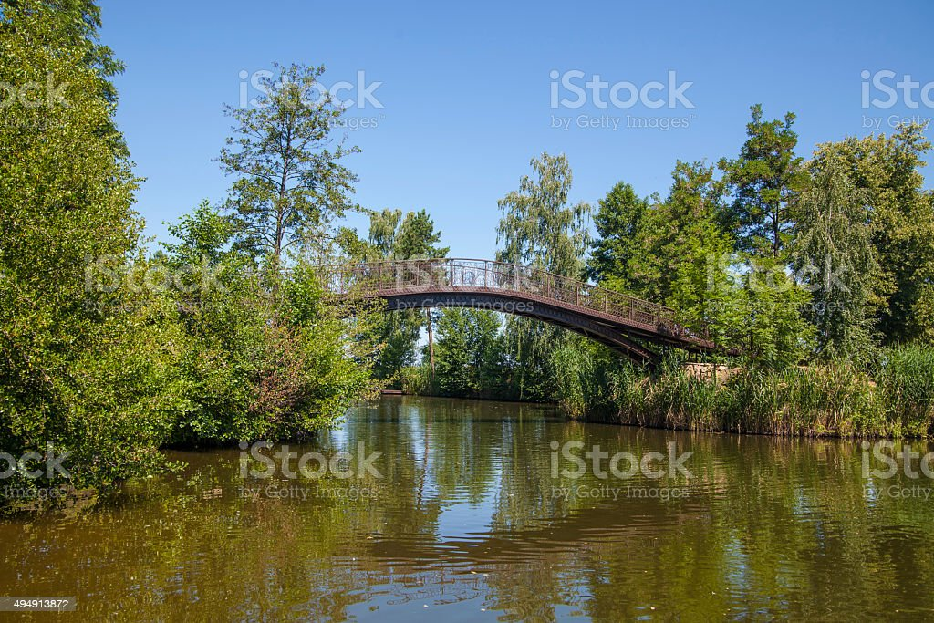 Bridge in the forest royalty-free stock photo