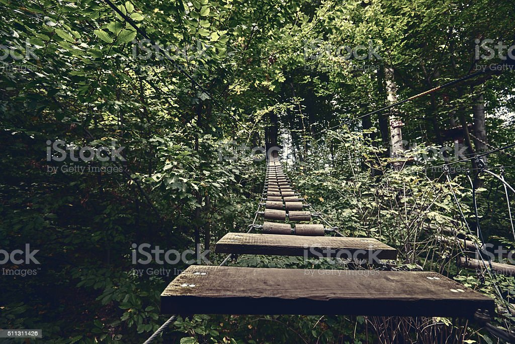 bridge in the forest stock photo