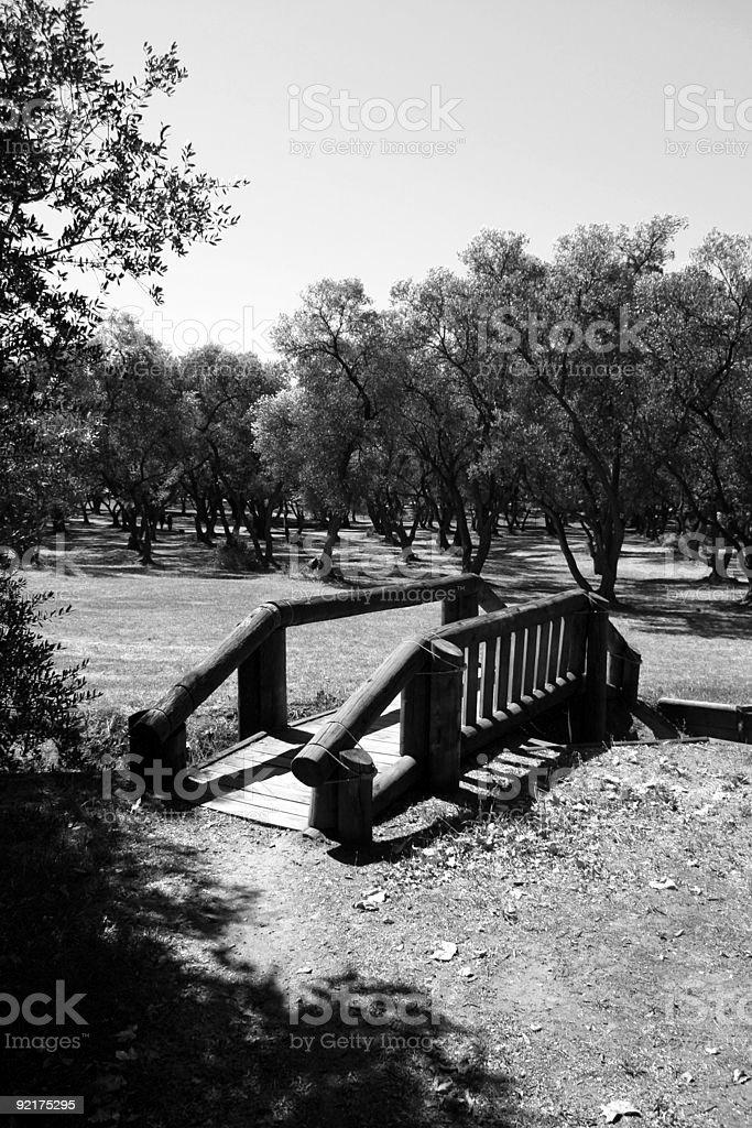 Bridge in the sun royalty-free stock photo